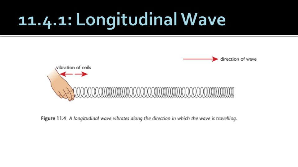 11.4.1: Longitudinal Wave