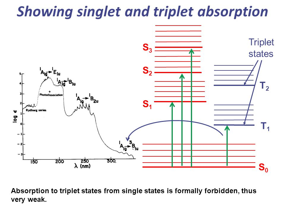 Showing singlet and triplet absorption