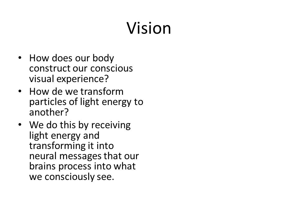 Vision How does our body construct our conscious visual experience