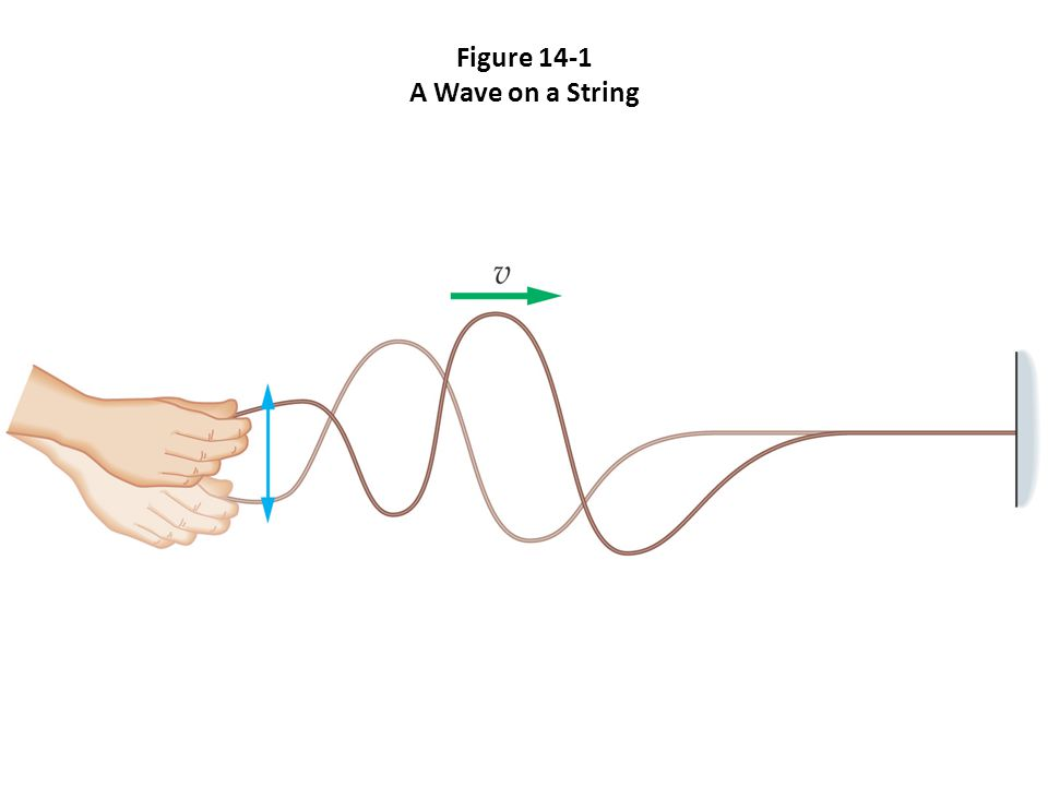 Figure 14-1 A Wave on a String