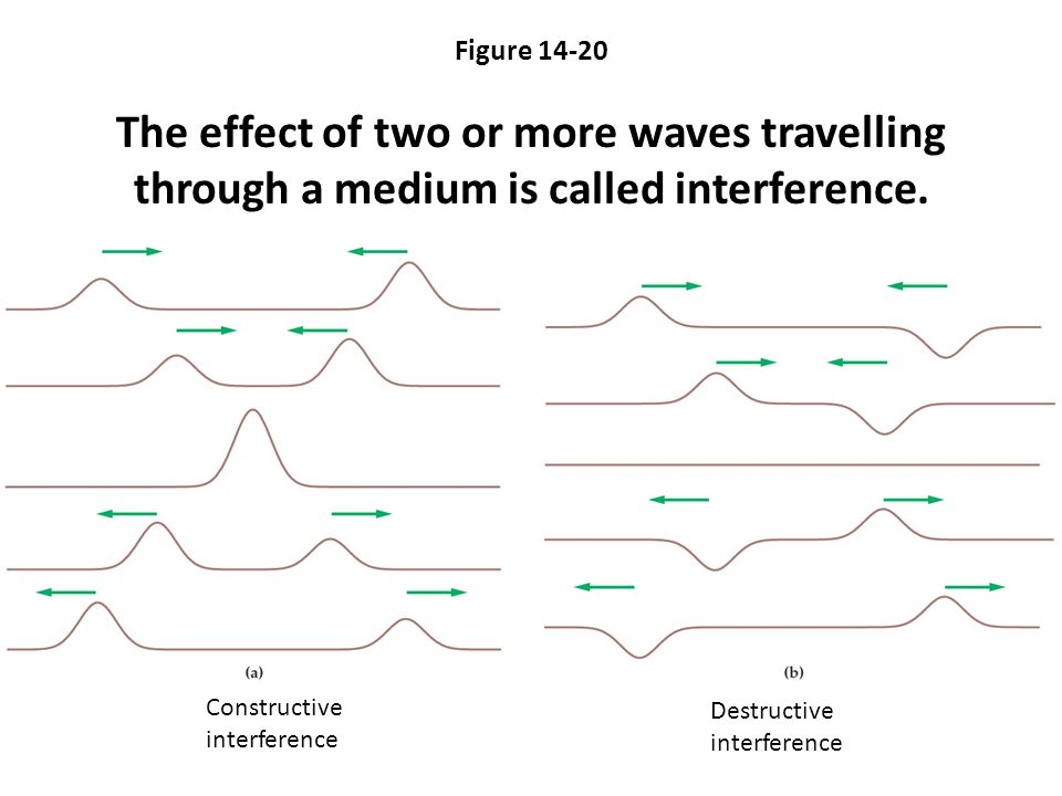 Figure 14-20 The effect of two or more waves travelling through a medium is called interference.