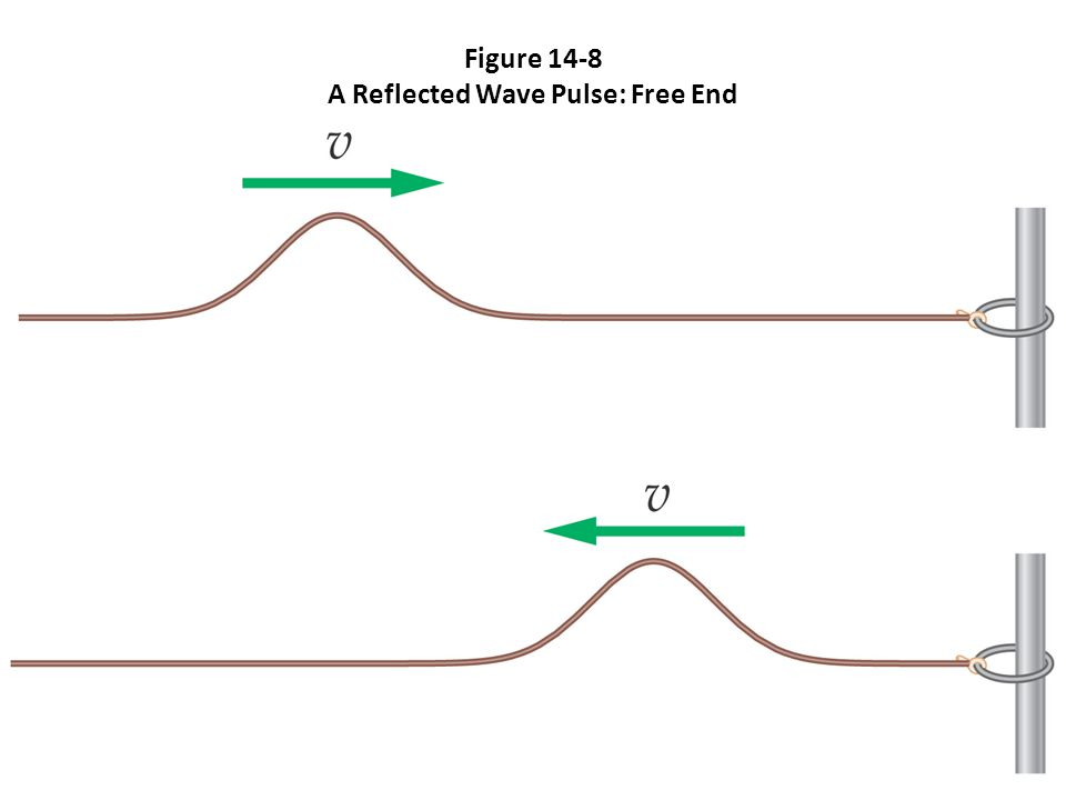 Figure 14-8 A Reflected Wave Pulse: Free End