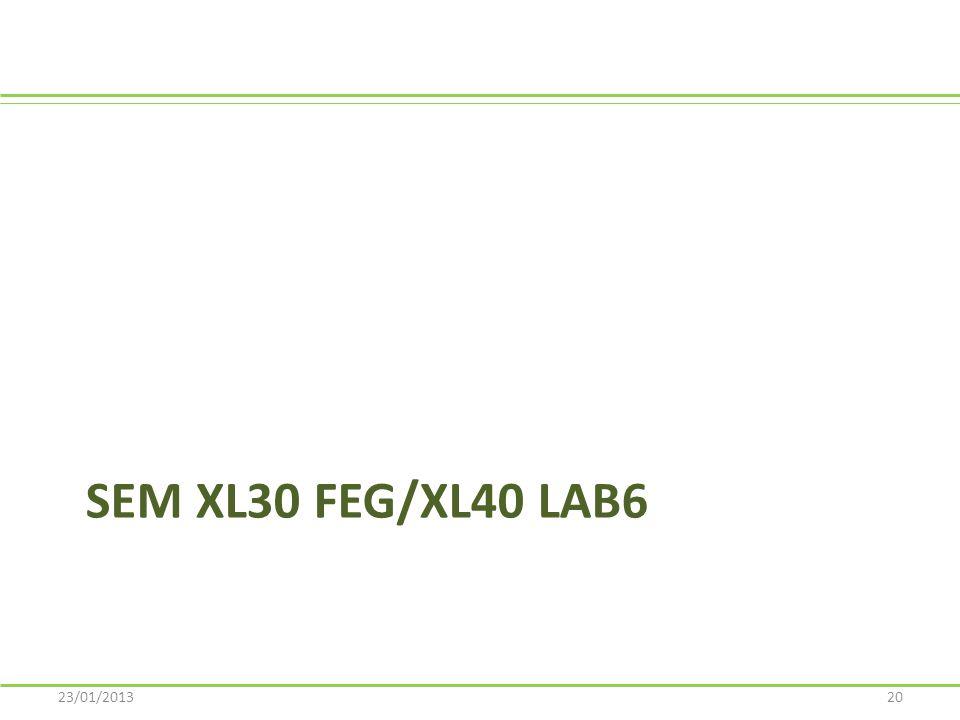 SEM XL30 FEG/XL40 LaB6 23/01/2013