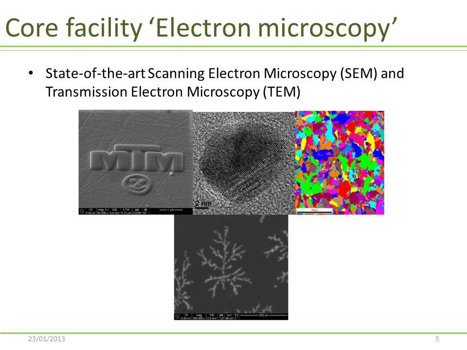 Core facility 'Electron microscopy'