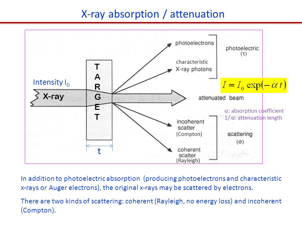 X-ray absorption / attenuation