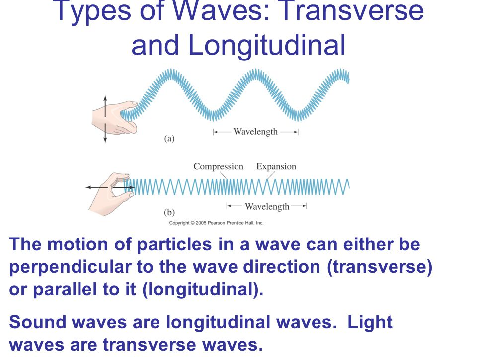 Types of Waves: Transverse and Longitudinal