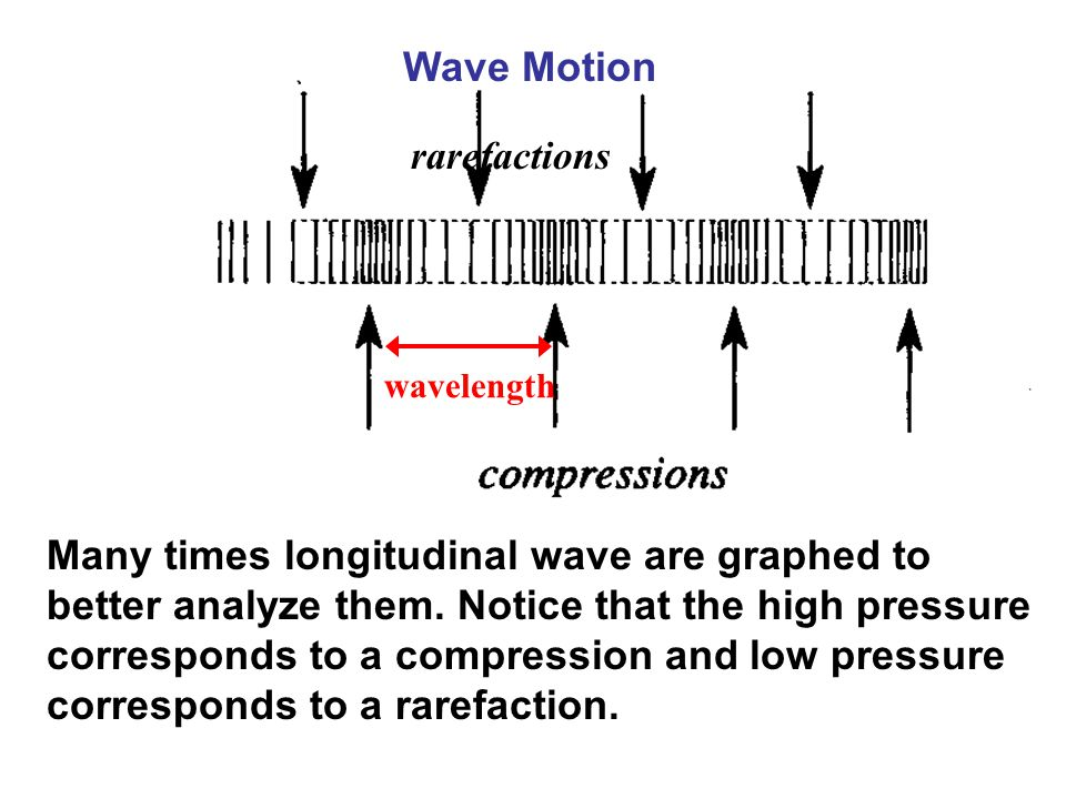 Wave Motion rarefactions. wavelength.
