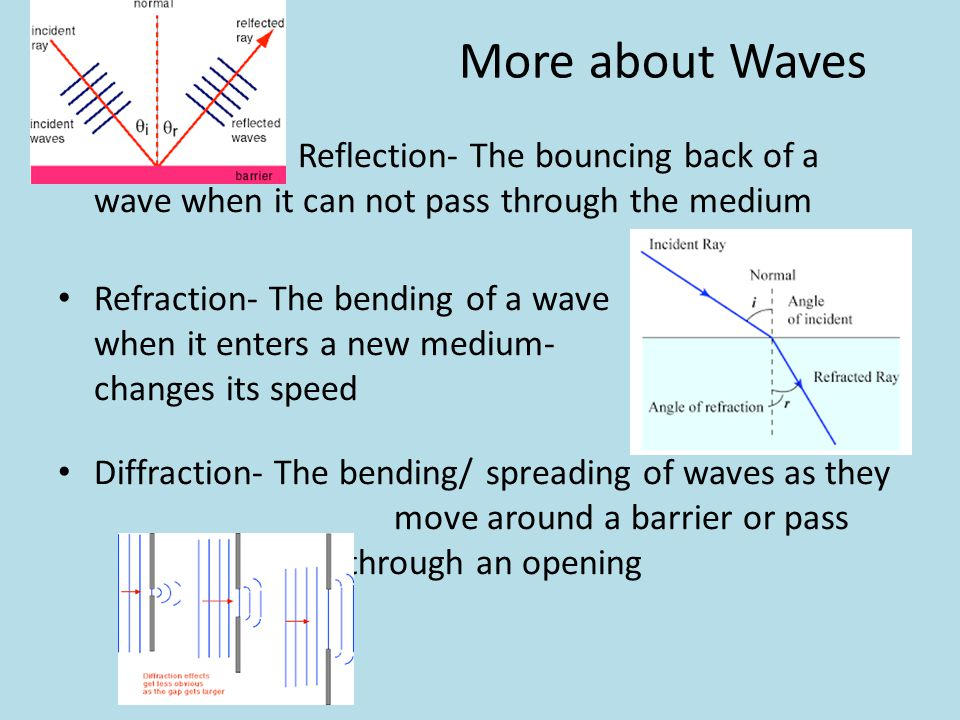 More about Waves Reflection- The bouncing back of a wave when it can not pass through the medium.