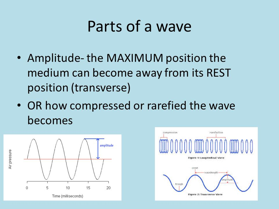 Parts of a wave Amplitude- the MAXIMUM position the medium can become away from its REST position (transverse)