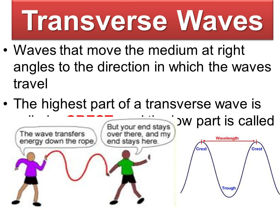 Transverse Waves Waves that move the medium at right angles to the direction in which the waves travel.