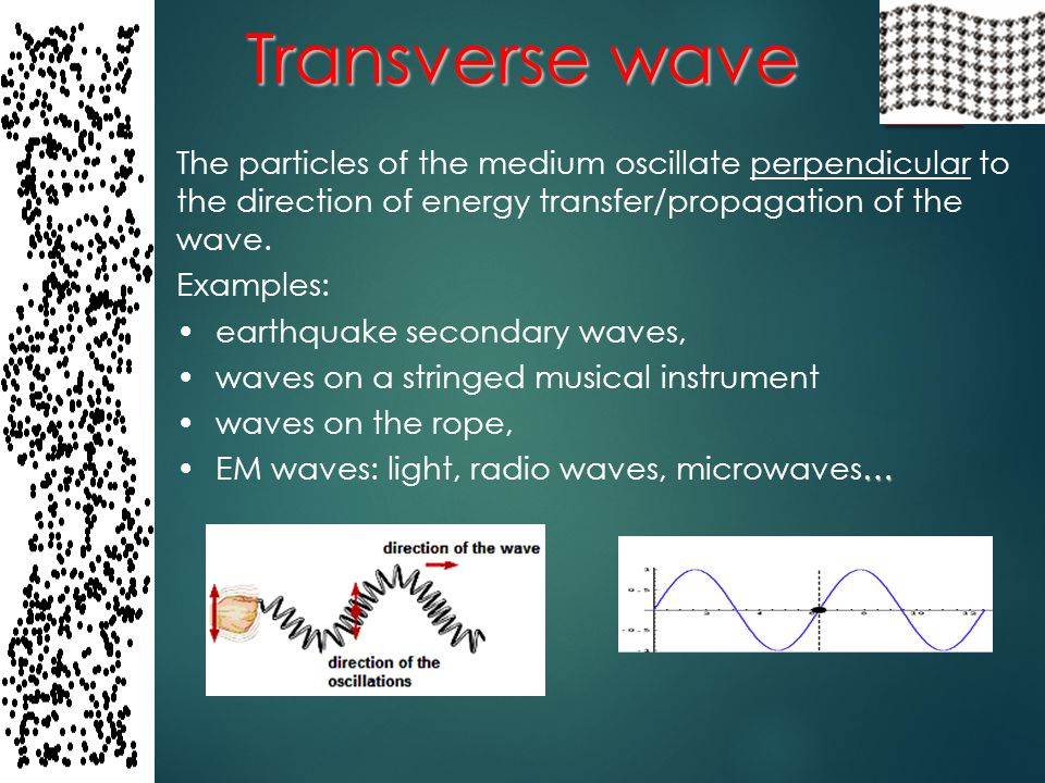 Transverse wave The particles of the medium oscillate perpendicular to the direction of energy transfer/propagation of the wave.