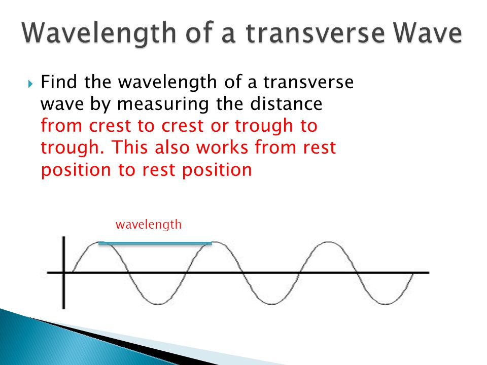 Wavelength of a transverse Wave