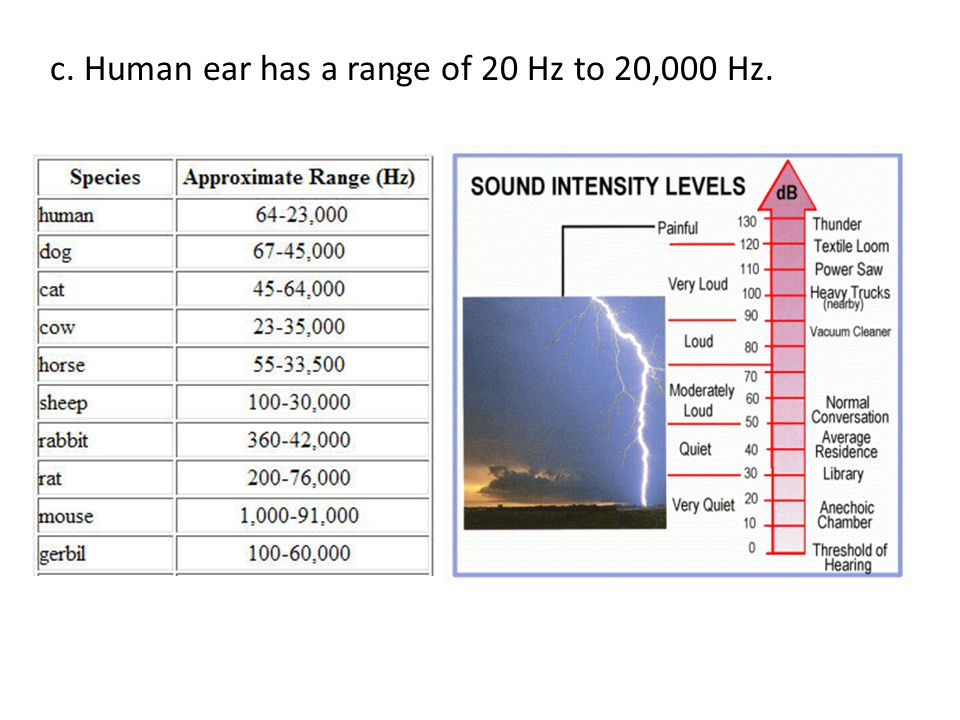 c. Human ear has a range of 20 Hz to 20,000 Hz.