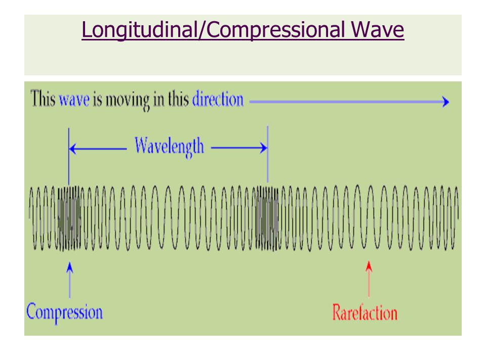 Longitudinal/Compressional Wave