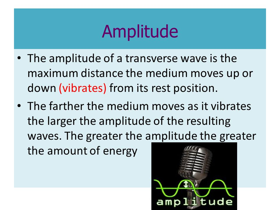 Amplitude The amplitude of a transverse wave is the maximum distance the medium moves up or down (vibrates) from its rest position.