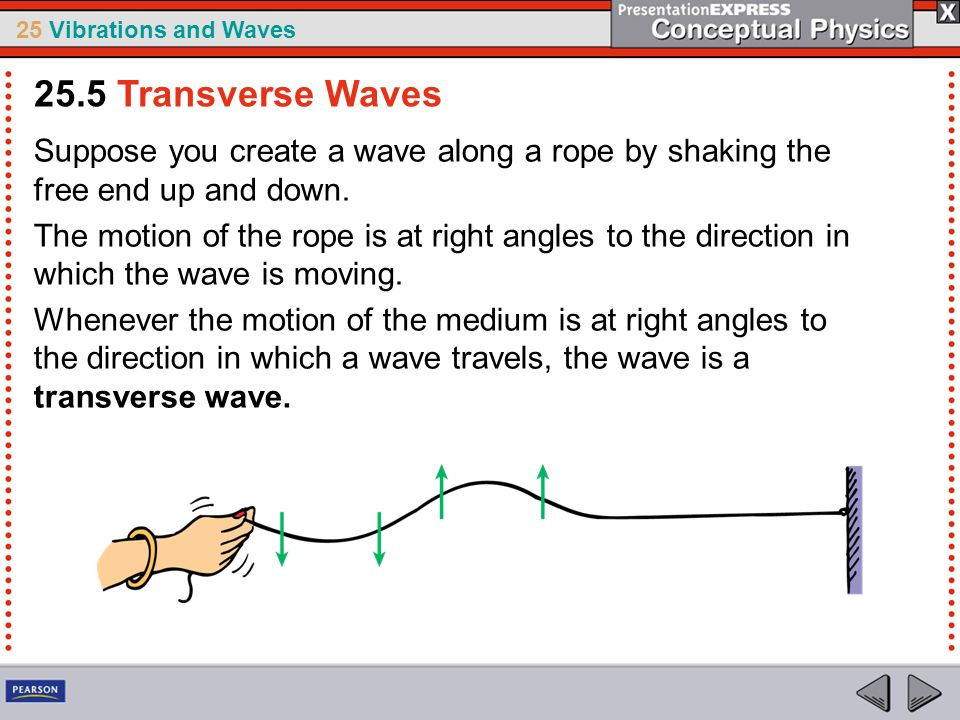 25.5 Transverse Waves Suppose you create a wave along a rope by shaking the free end up and down.