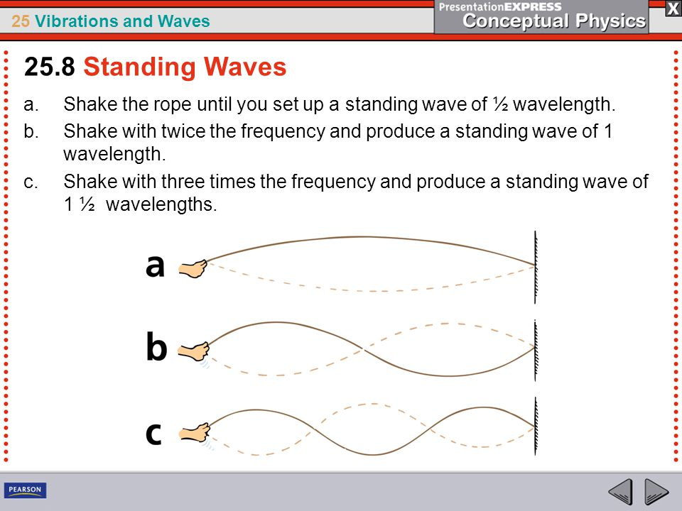 25.8 Standing Waves Shake the rope until you set up a standing wave of ½ wavelength.