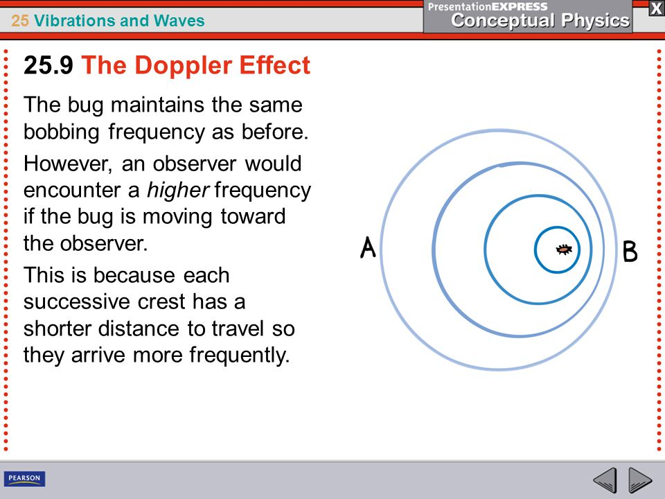 25.9 The Doppler Effect The bug maintains the same bobbing frequency as before.