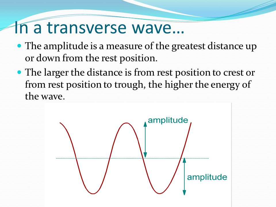 In a transverse wave… The amplitude is a measure of the greatest distance up or down from the rest position.