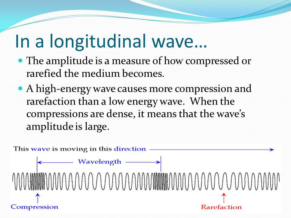 In a longitudinal wave…