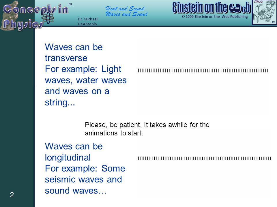 Waves can be transverse