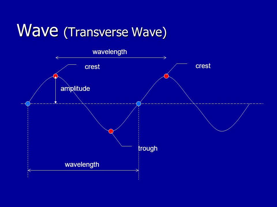 Wave (Transverse Wave)