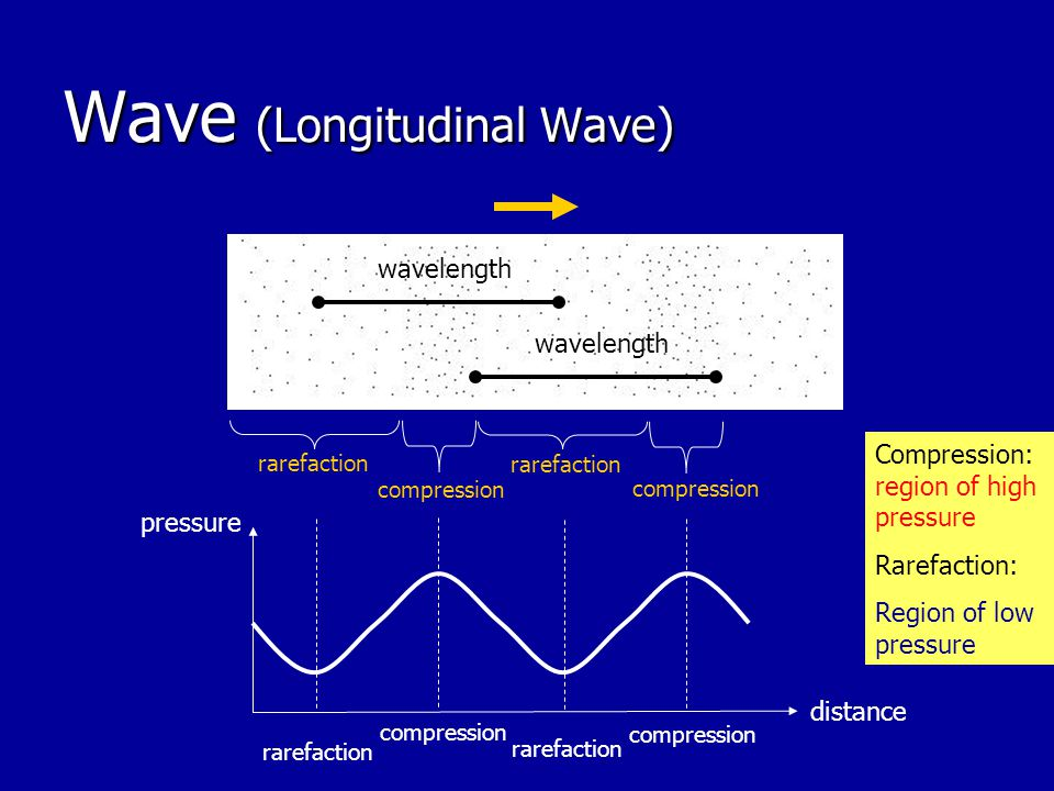 Wave (Longitudinal Wave)