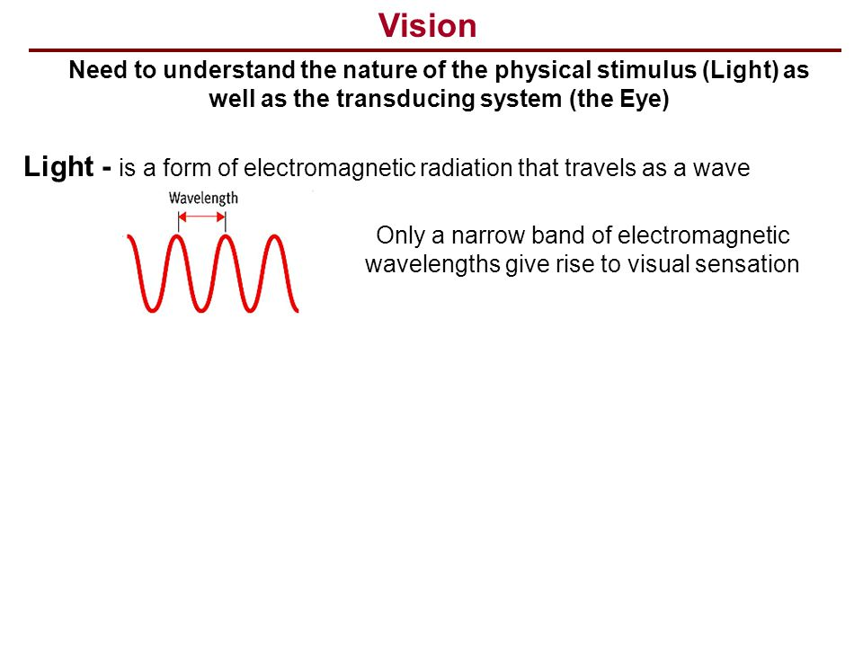 Vision Need to understand the nature of the physical stimulus (Light) as well as the transducing system (the Eye)