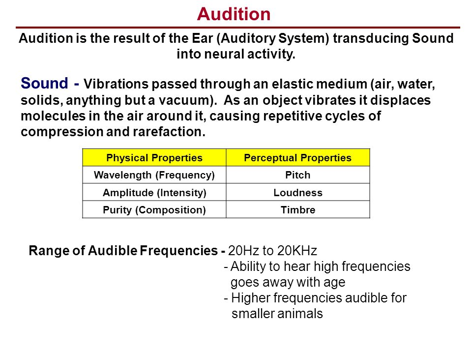 Perceptual Properties Wavelength (Frequency) Amplitude (Intensity)