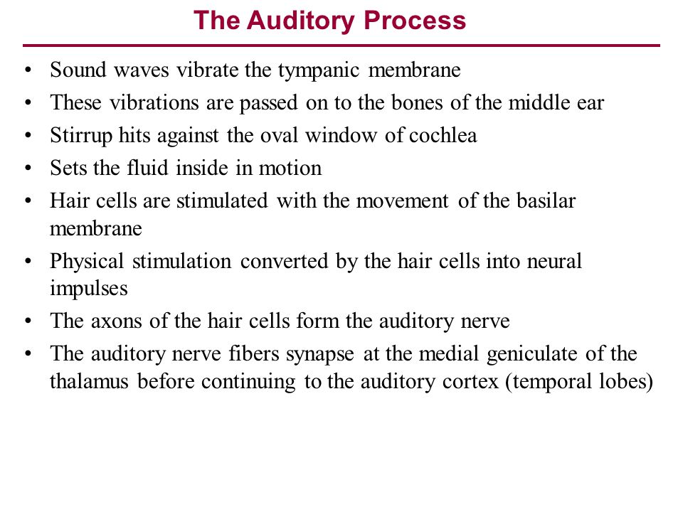 The Auditory Process Sound waves vibrate the tympanic membrane