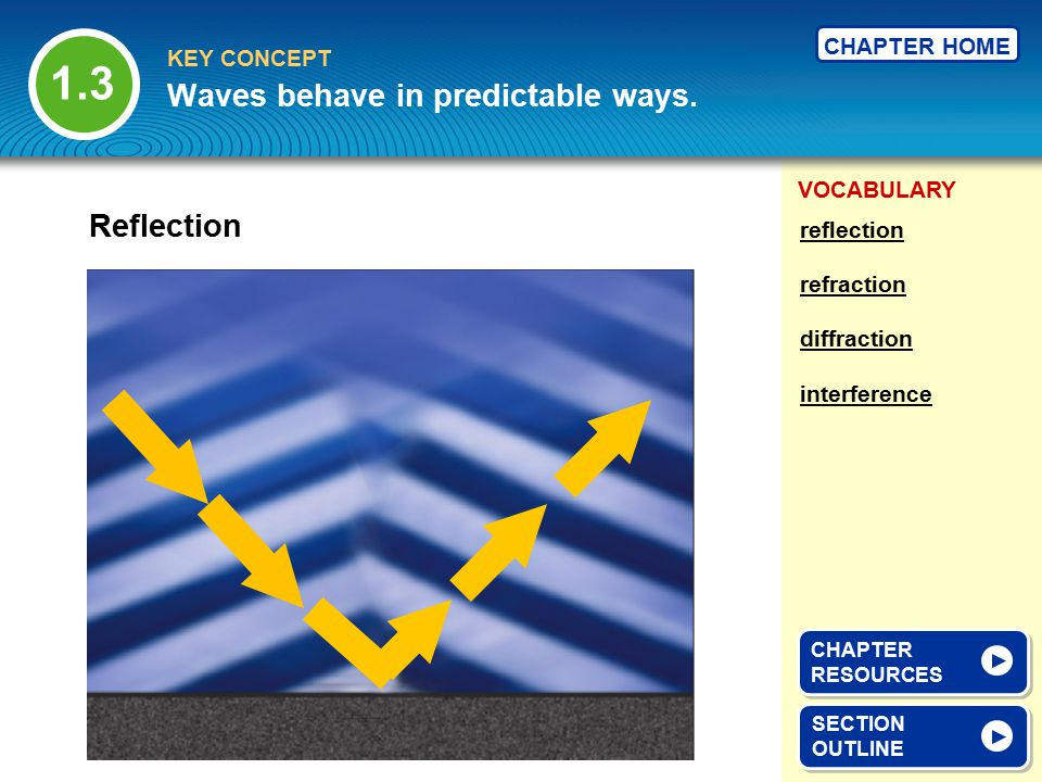 Waves behave in predictable ways.
