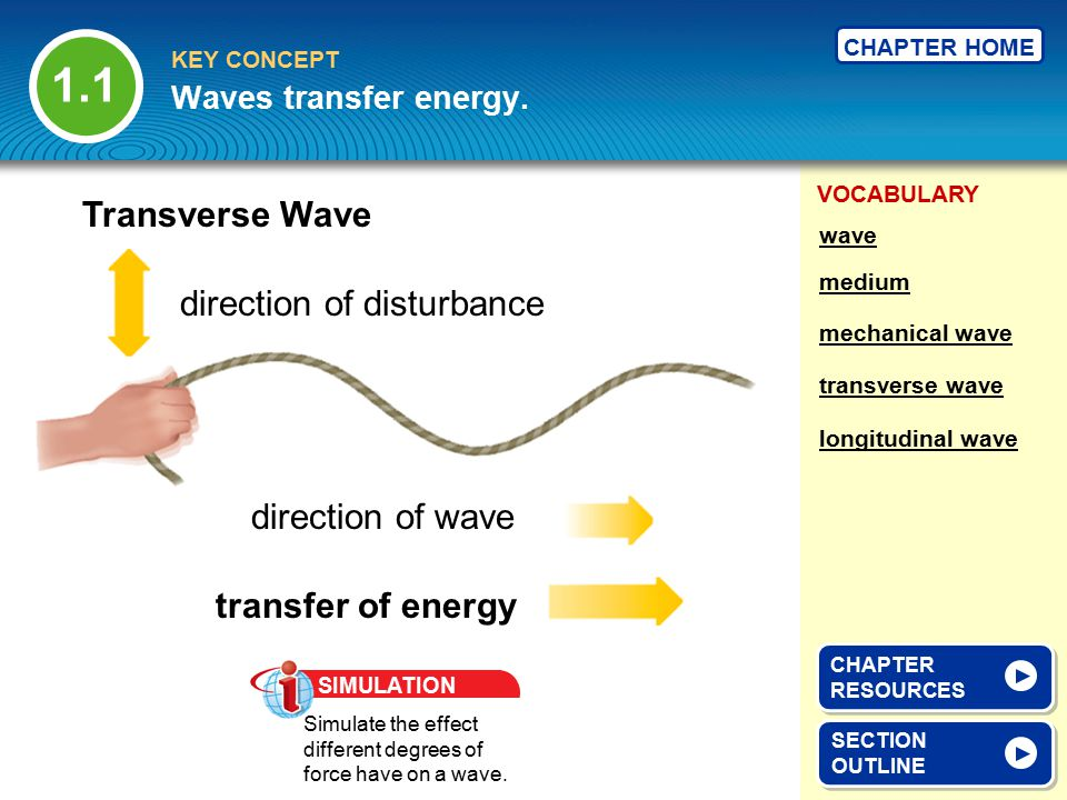 1.1 Transverse Wave direction of disturbance direction of wave