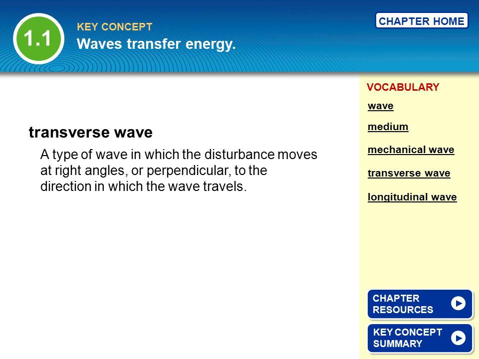1.1 transverse wave Waves transfer energy.