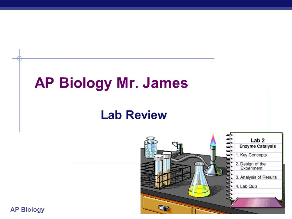 AP Biology Mr. James Lab Review 2004-2005