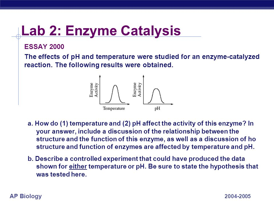 Lab 2: Enzyme Catalysis ESSAY 2000