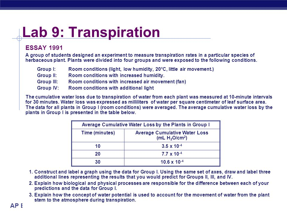 Lab 9: Transpiration ESSAY 1991 2004-2005