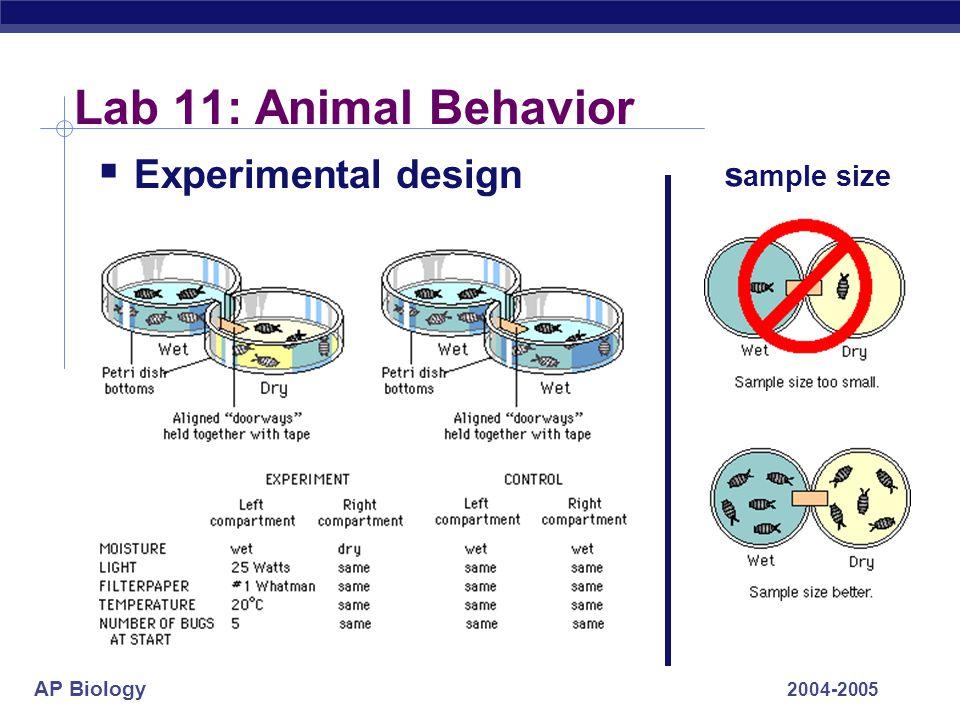 Lab 11: Animal Behavior Experimental design sample size 2004-2005