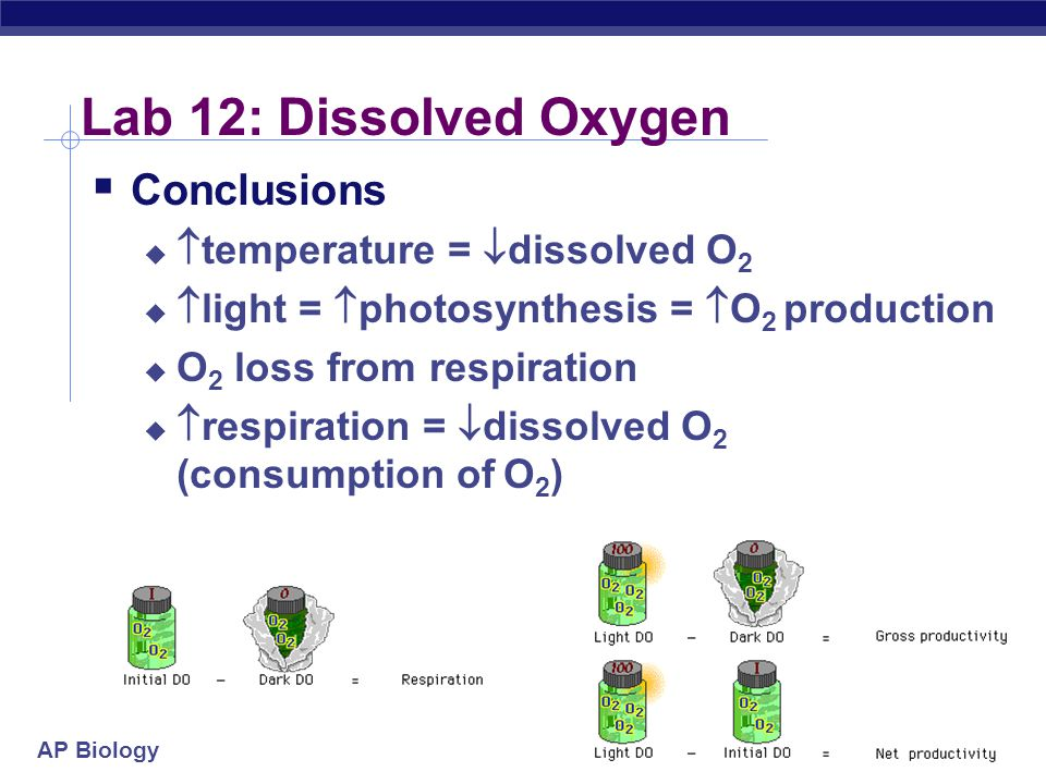 Lab 12: Dissolved Oxygen Conclusions temperature = dissolved O2