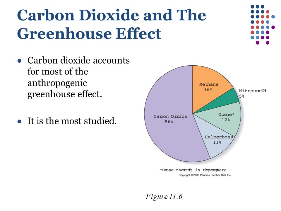 Carbon Dioxide and The Greenhouse Effect