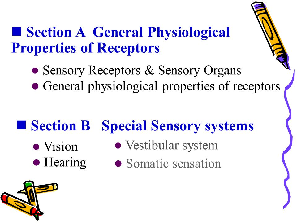 Section A General Physiological Properties of Receptors