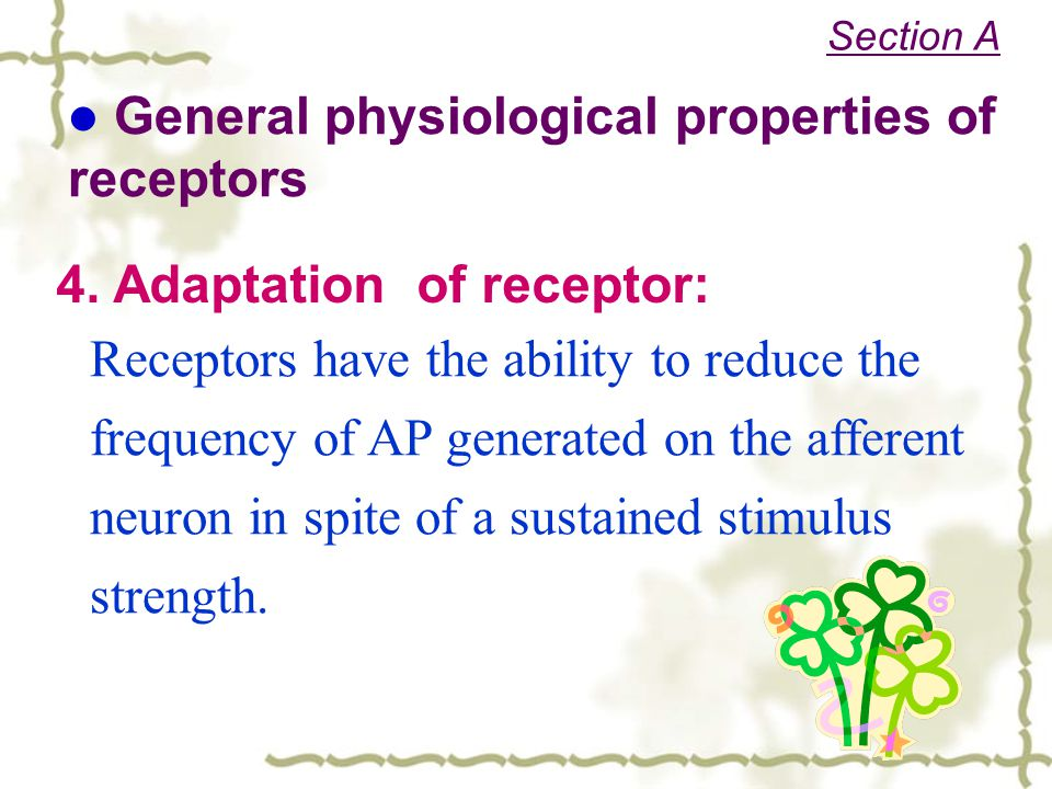 General physiological properties of receptors