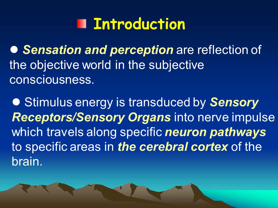 Introduction Sensation and perception are reflection of the objective world in the subjective consciousness.