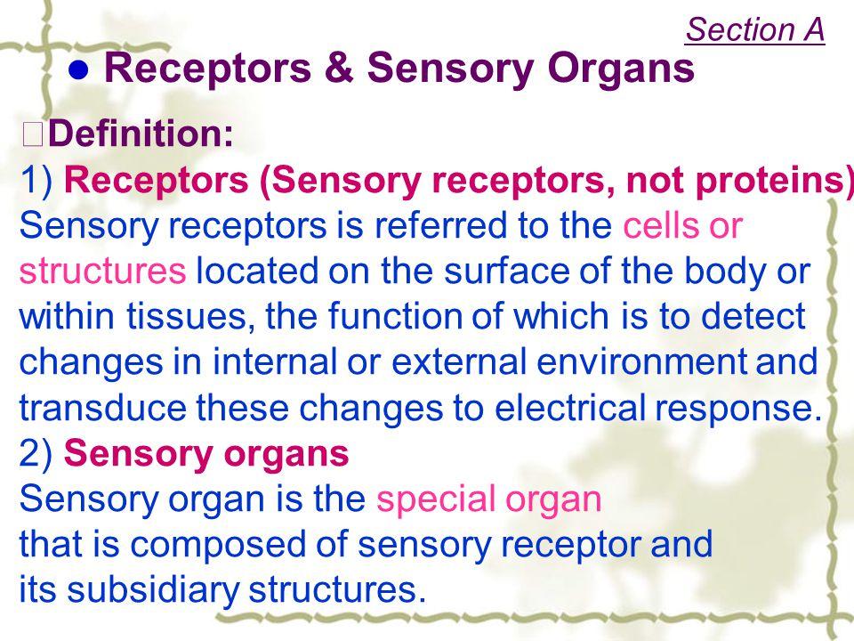 Receptors & Sensory Organs