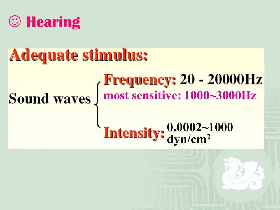 Hearing 0.0002~1000 dyn/cm2 most sensitive: 1000~3000Hz