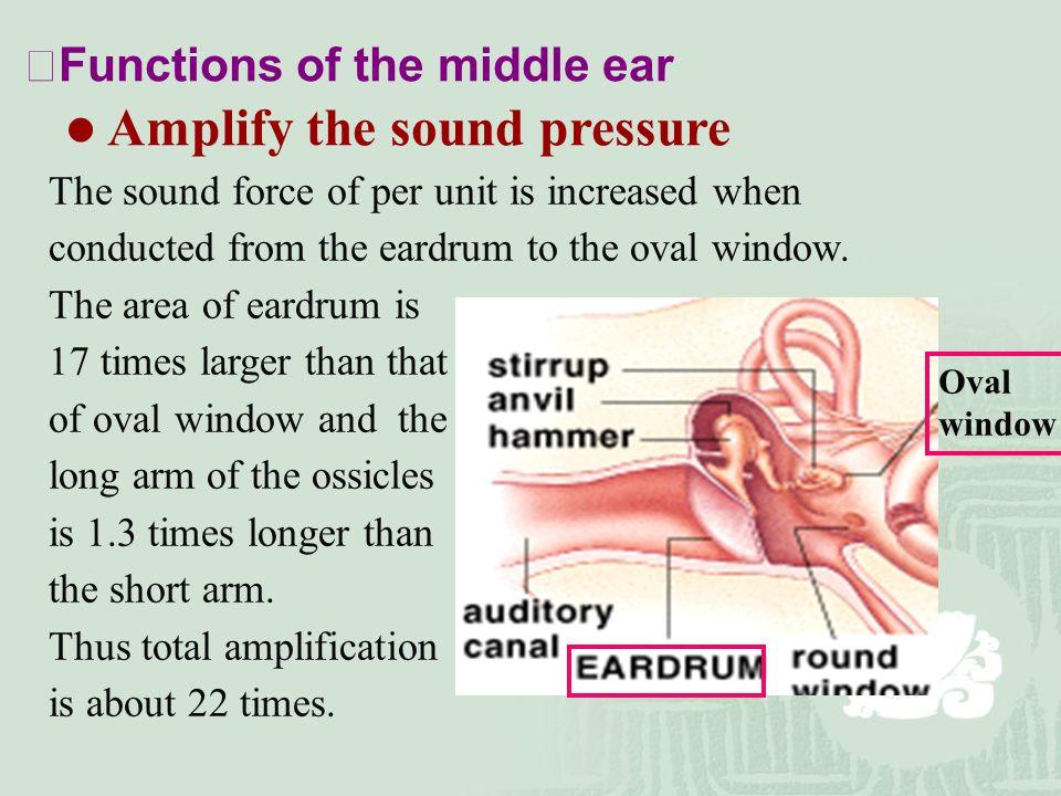 Amplify the sound pressure