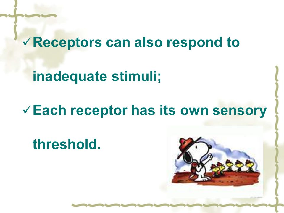 Receptors can also respond to inadequate stimuli;