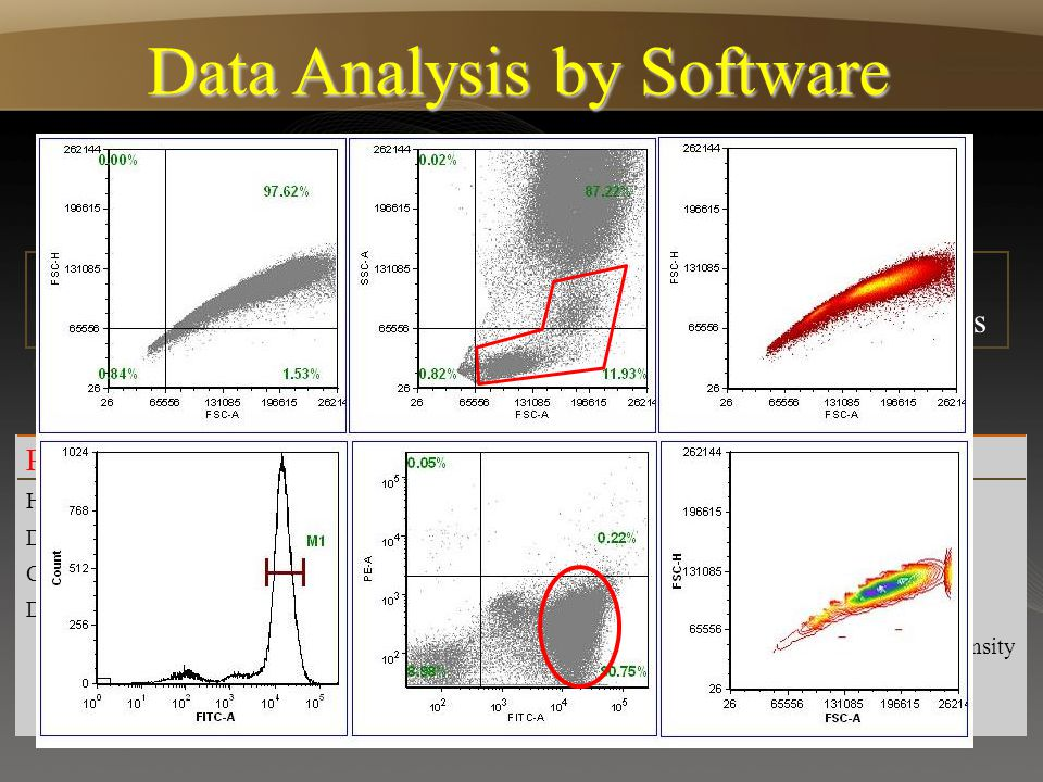 Data Analysis by Software