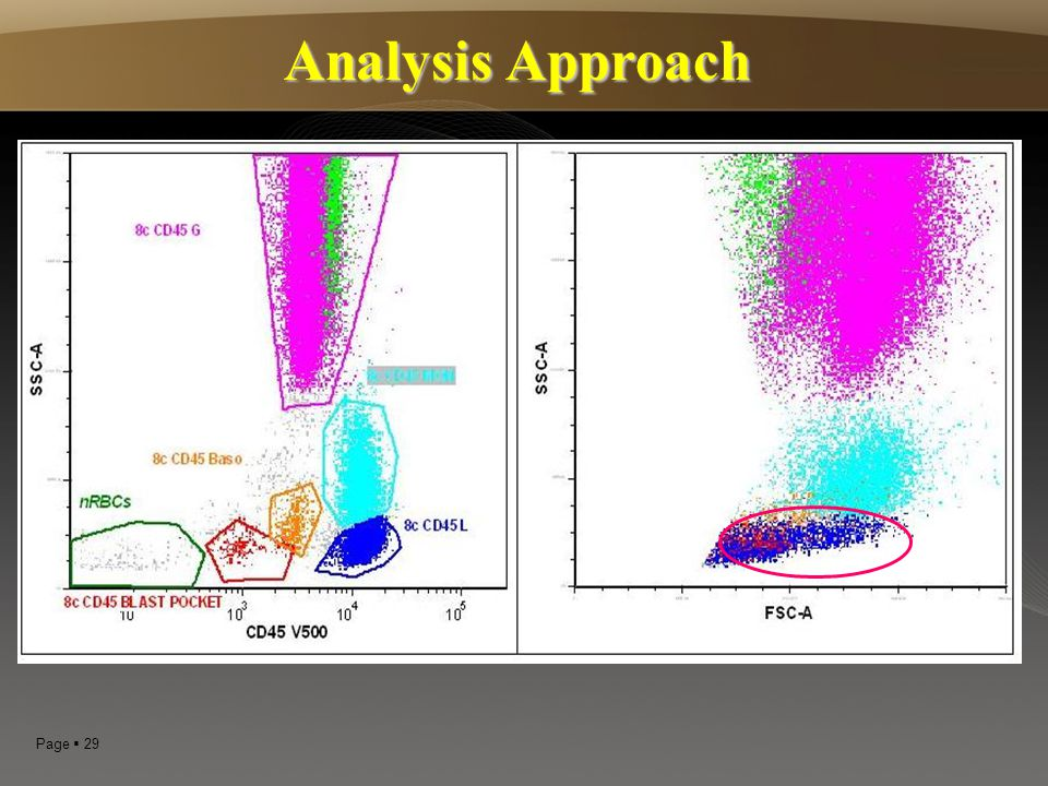 Analysis Approach 29