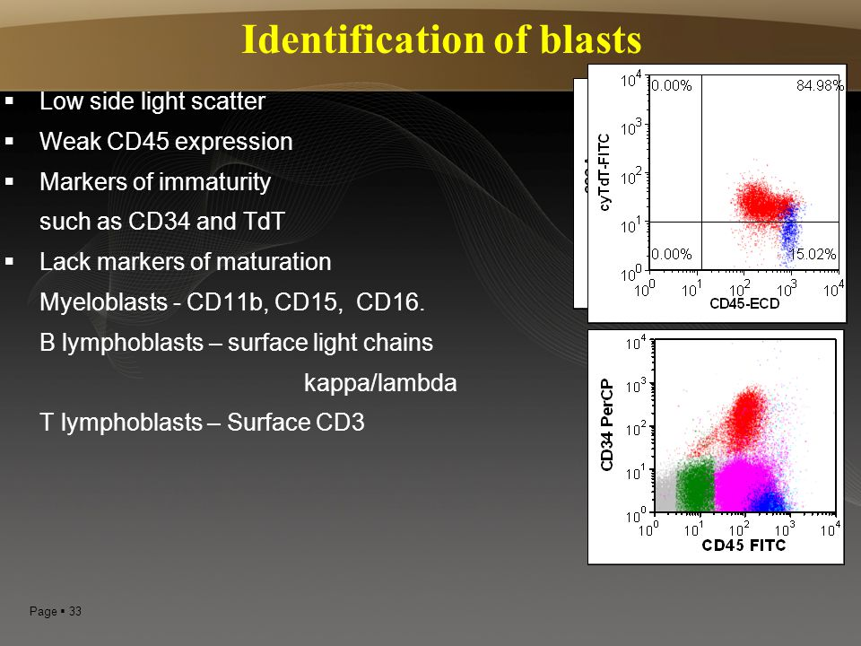 Identification of blasts