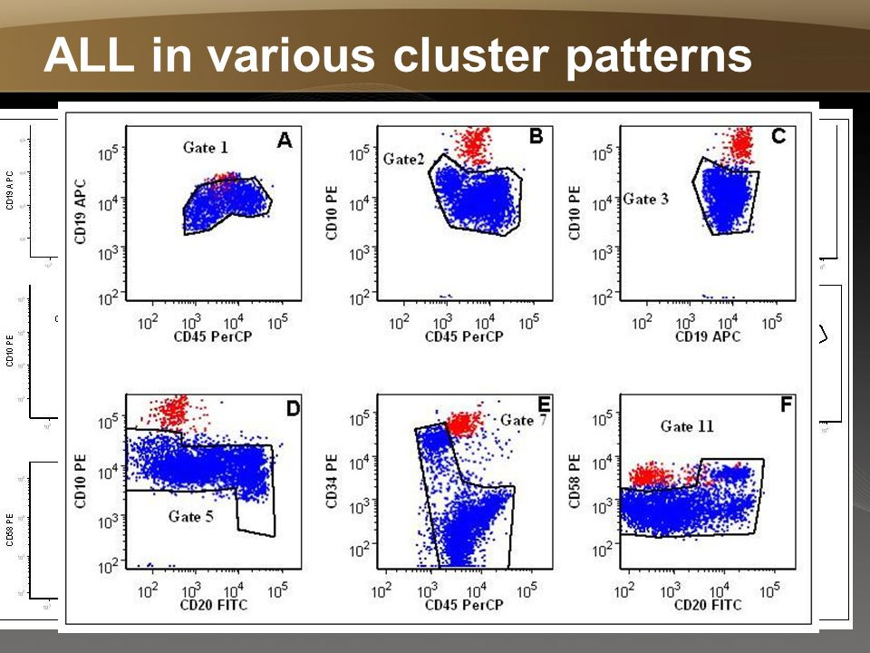 ALL in various cluster patterns